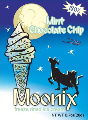 Moonix 150 Freeze Dried Ice Cream Mint Chocolate Chip