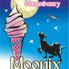 Freeze Dried Ice Cream Moonix 150 Strawberry