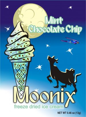 Moonix Freeze Dried Ice Cream Mint Chocolate Chip
