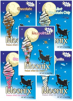 Moonix 150 Freeze Dried Ice Cream Variety